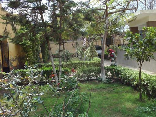 حديقة الدير