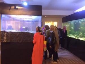 متحف النيل بأسوان يستقبل 219 من عضوات2