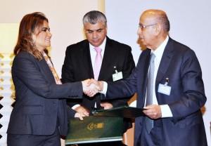 الصندوق العربي نصر