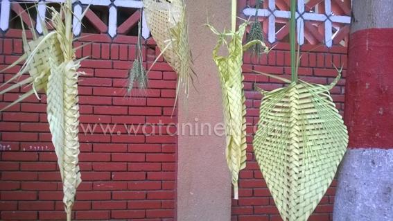 شوارع كنائس السويس تتزين بسعف النخيل واعواد القمح والورود  (2)